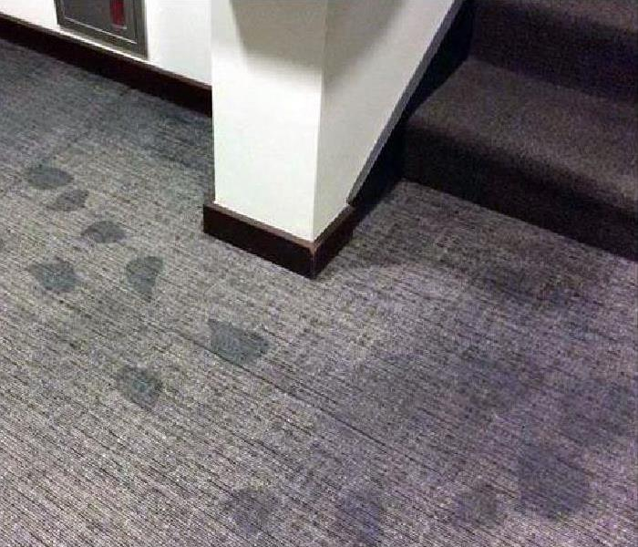 water damaged carpeting