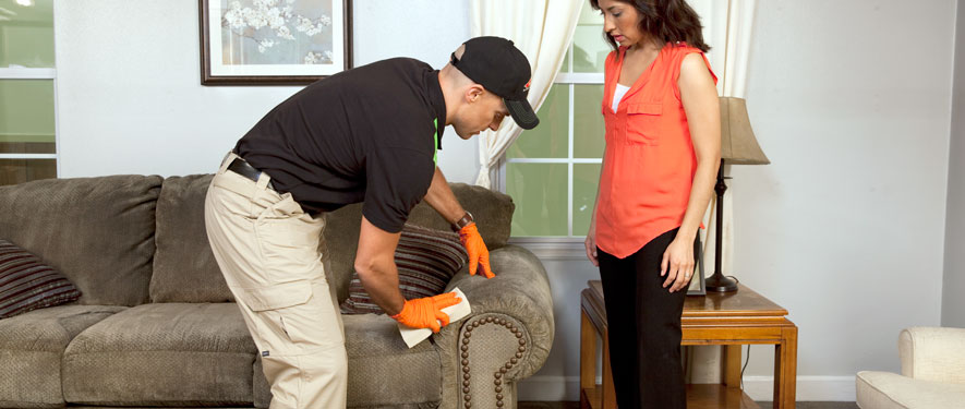 Kent, WA carpet upholstery cleaning