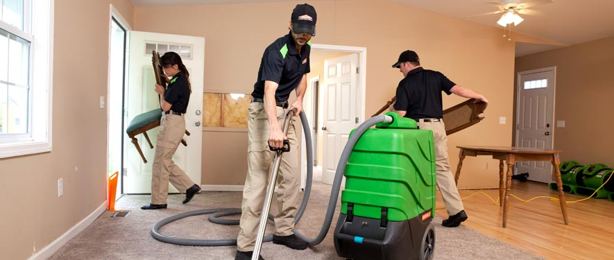 Kent, WA cleaning services